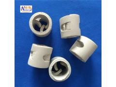 厂价供应鲍尔环 量大价优冷却塔填料 规格齐全陶瓷鲍尔环