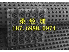浙江车库排水板厂家//车库顶板排水板18769880974