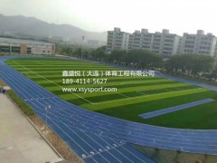 透气型塑胶跑道施工 塑胶跑道厂家 塑胶跑道价格三年质保