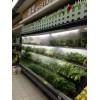 集佳超市货架果蔬保鲜超声波加湿器雾化器