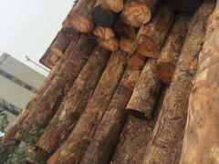 广东新品桃花芯木批销,惠州木材厂