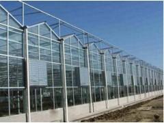 河南玻璃溫室建設價格|山東溫室大棚供應