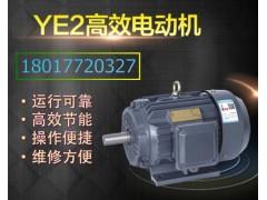 上海德東電機YE2-80M-6普通電機0.55KW三相電機