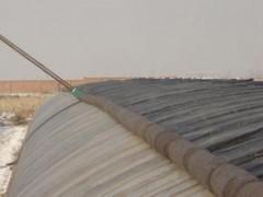 供應濰坊優質的大棚保溫被-新型大棚保溫被生產商