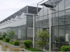 建造智能温室就来凯尔农业科技-温室工程公司