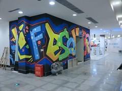 辽宁专业的墙体彩绘厂家 涂鸦多少钱