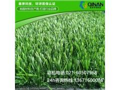 秦岸环保科技有品质的人工草皮供应,家庭人造草坪