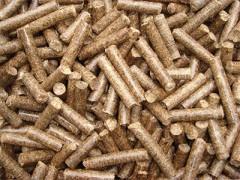 松木顆粒廠家|銷量好的松木顆粒批發供應