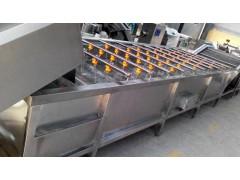 广州高品质清洗输送设备批售|洗菜机输送设备