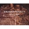 山东专业的废铜回收提供-浙江废铜回收多少钱