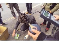 【推荐】厦门优惠的厦门智能停车系统——漳州智能车牌识别系统价格