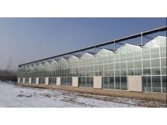 想建连栋薄膜温室就到金田温室-辽宁连栋薄膜温室