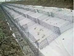 山東熱賣石籠網供應價格_特色的石籠網直銷