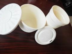 土豆純淀粉全降解餐具及包裝制品生產流水線