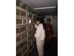 白玉蝸牛凍肉供應商河南安徽白玉蝸牛養殖加盟價格