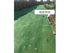 兩針防塵網蓋土網南京廠家直銷