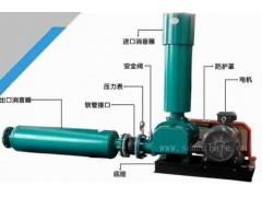 厂家直销小型罗茨鼓风机 污水处理曝气增氧气力输送罗茨鼓风机
