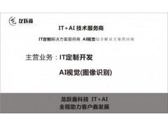 龍躍鑫科技IT+AI